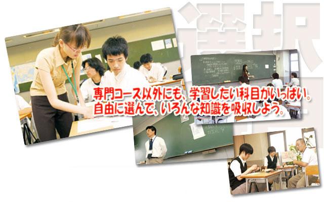 専門コース以外にも、学習したい科目がいっぱい。自由に選んで、いろんな知識を吸収しよう。